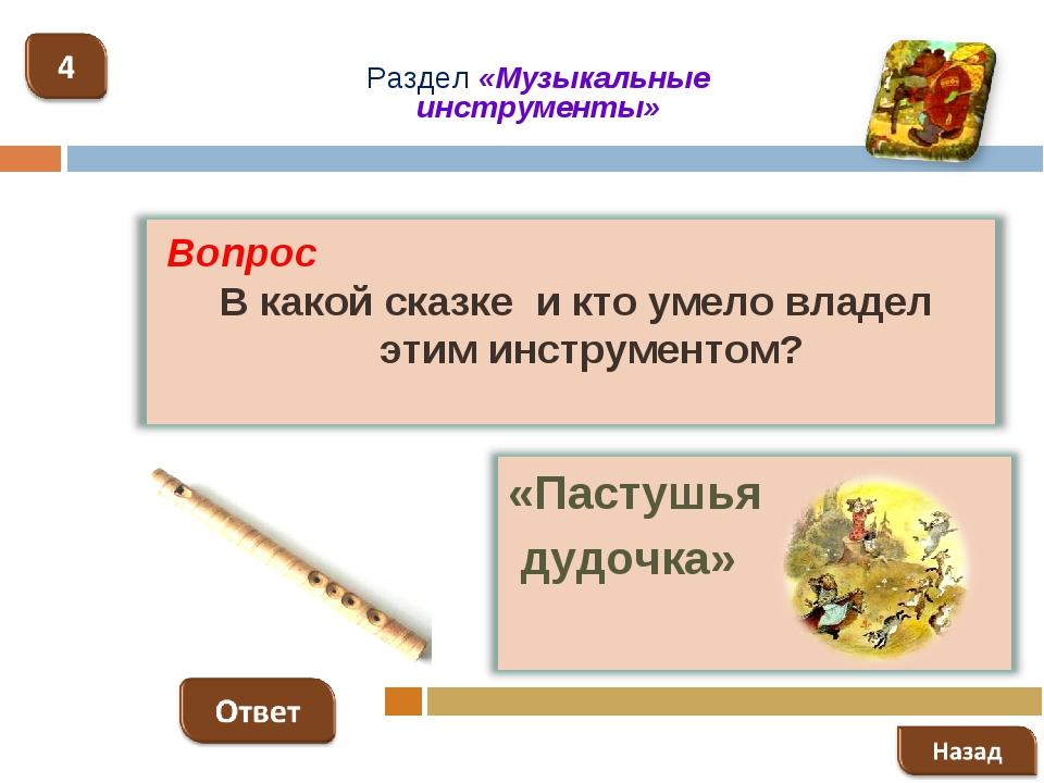 Раздел «Музыкальные инструменты»