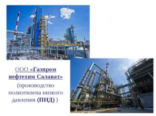 ООО«Газпром нефтехим Салават» (производство полиэтилена низкого давления (ПН