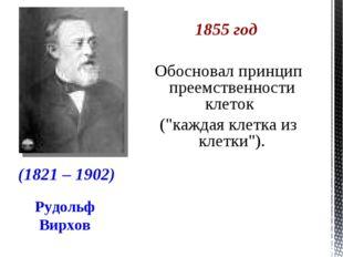 """Рудольф Вирхов 1855 год Обосновал принцип преемственности клеток (""""каждая кле"""