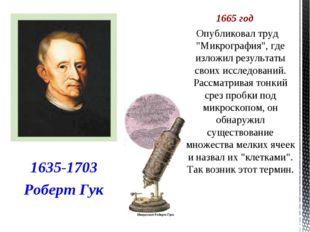 """1665 год  Опубликовал труд """"Микрография"""", где изложил результаты своих иссле"""