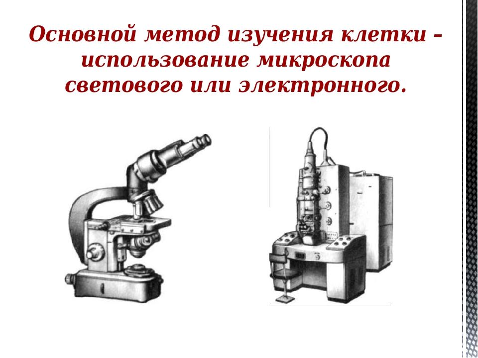 Основной метод изучения клетки – использование микроскопа светового или элект...