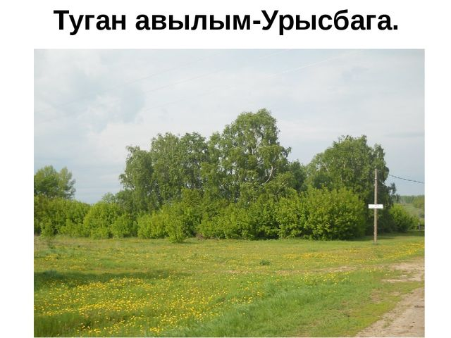 Туган авылым-Урысбага.