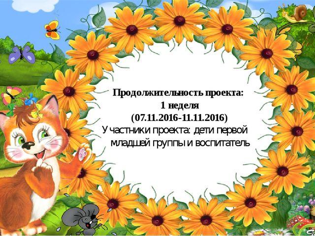 Продолжительность проекта: 1 неделя (07.11.2016-11.11.2016) Участники проект...