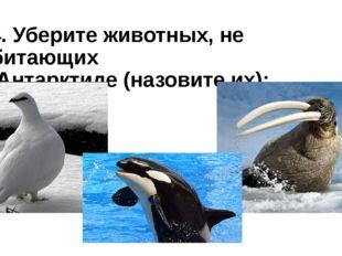 14. Уберите животных, не обитающих в Антарктиде (назовите их):