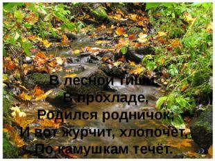 В лесной тиши, В прохладе, Родился родничок; И вот журчит, хлопочет, По камуш