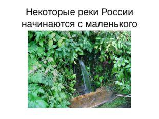 Некоторые реки России начинаются с маленького родника