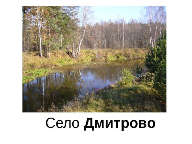 Село Дмитрово