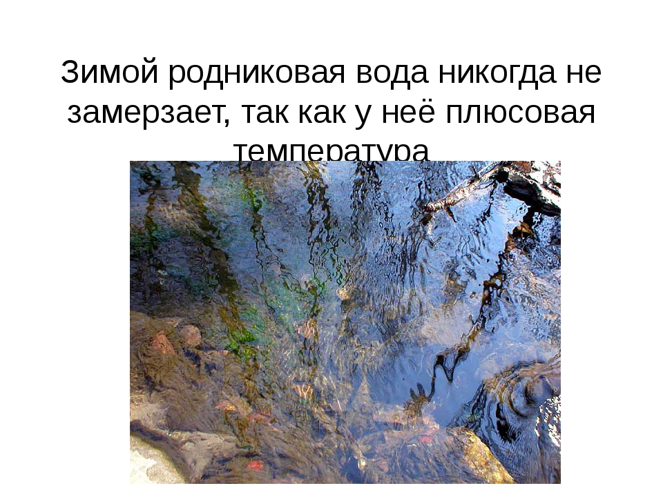 Зимой родниковая вода никогда не замерзает, так как у неё плюсовая температура