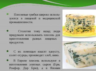 Плесневые грибки широко исполь- зуются в пищевой и медицинской промышленност
