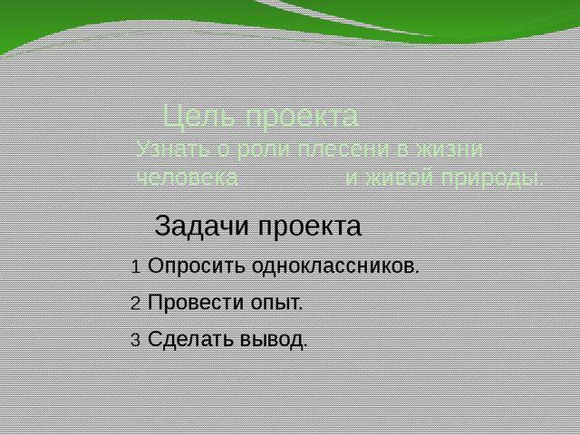 Цель проекта Узнать о роли плесени в жизни человека и живой природы. Задачи...