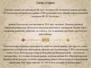 Силы сторон Союзная армия насчитывала 85 тыс. человек (60-тысячная армия русс