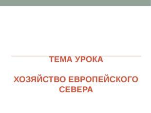 ТЕМА УРОКА ХОЗЯЙСТВО ЕВРОПЕЙСКОГО СЕВЕРА