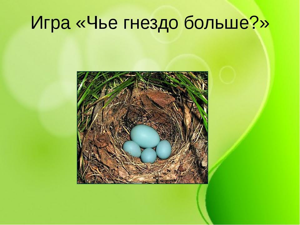 иголкой где чье гнездо картинки рассылку, чтобы первыми