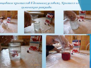 Выращивание кристаллов в домашних условиях. Кристалл из химического реактива.