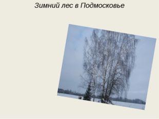 Мороз в окно глядит и дышит И на стекле узоры пишет, А против мерзлого окна,