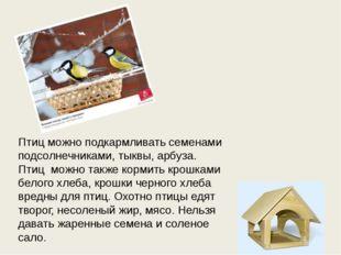 Птиц можно подкармливать семенами подсолнечниками, тыквы, арбуза. Птиц можно