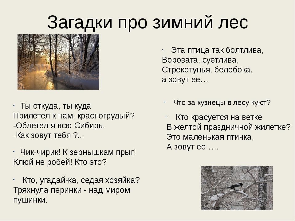 Загадки про зимний лес Ты откуда, ты куда Прилетел к нам, красногрудый? -Обле...