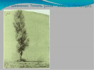 Т. Г. Шевченко. Тополь. [1839 – 1840. С.-Петербург).