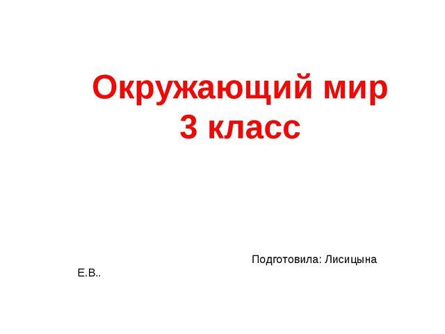 Окружающий мир 3 класс Подготовила: Лисицына Е.В..
