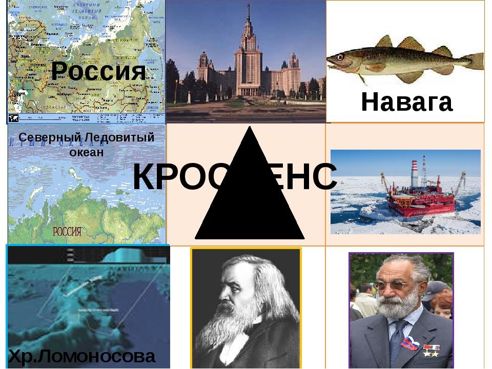 Навага Северный Ледовитый океан Россия Хр.Ломоносова КРОССЕНС