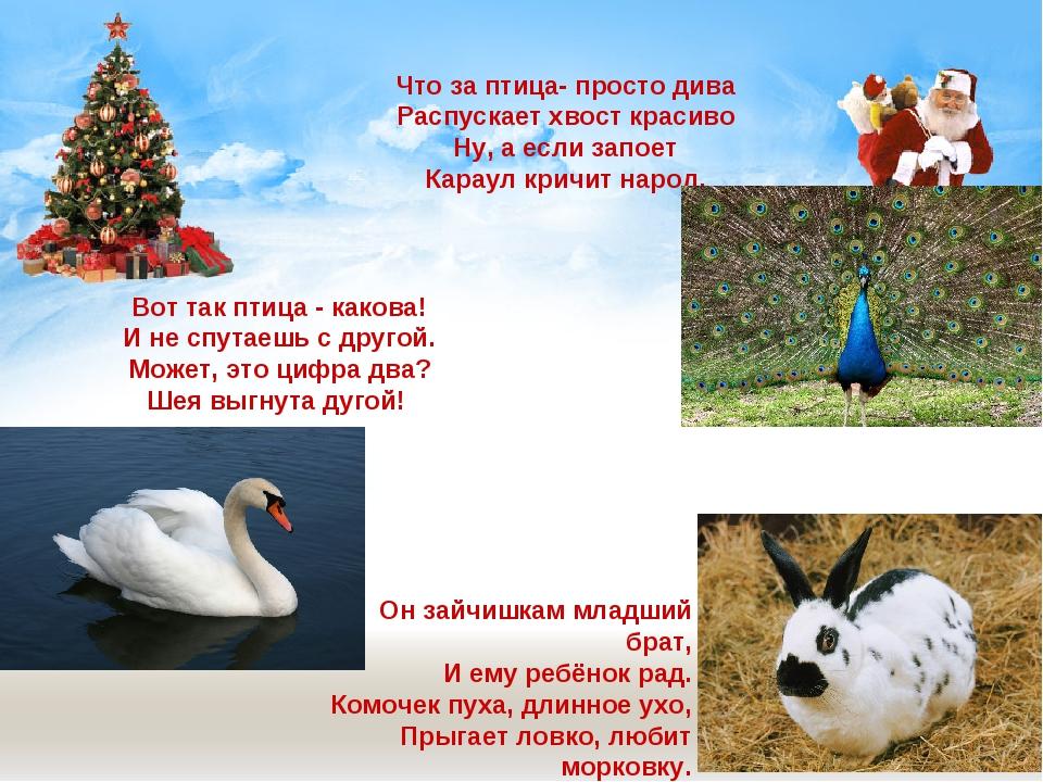 Что за птица- просто дива Распускает хвост красиво Ну, а если запоет Караул к...