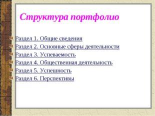 Структура портфолио Раздел 1. Общие сведения Раздел 2. Основные сферы деятель