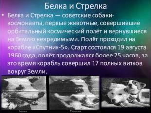 Белка и Стрелка - собаки - космонавты, первые животные, совершившие орбитальн
