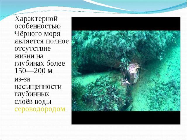 . Характерной особенностью Чёрного моря является полное отсутствие жизни на г...