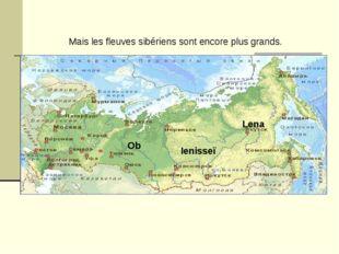 Mais les fleuves sibériens sont encore plus grands. Lena Ienisseï Ob