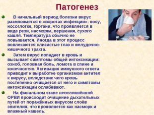 Патогенез В начальный период болезни вирус размножается в «воротах инфекции»