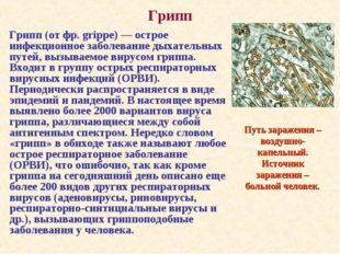 Грипп Грипп (от фр. grippe) — острое инфекционное заболевание дыхательных пут