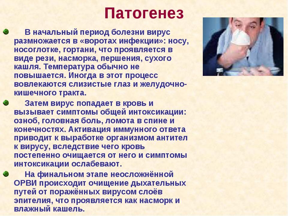 Патогенез В начальный период болезни вирус размножается в «воротах инфекции»...