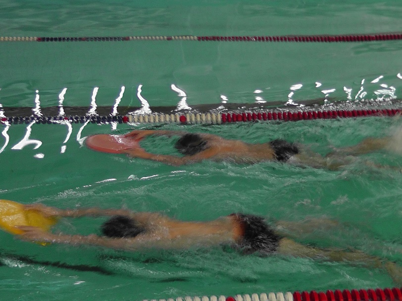 Реферат на тему влияние занятий плаванием на опорно двигательный   hello html m361ea1b2 jpg
