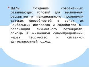Цель: Создание современных, развивающих условий для выявления, раскрытия и м