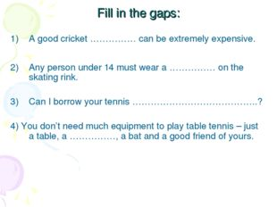 Fill in the gaps: A good cricket …………… can be extremely expensive. Any person