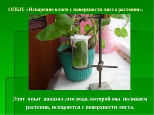 Этот опыт доказал ,что вода, которой мы поливаем растения, испаряется с повер