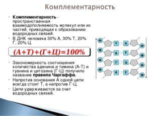 Комплементарность - пространственная взаимодополняемость молекул или их часте