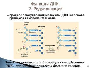 – процесс самоудвоения молекулы ДНК на основе принципа комплементарности. *