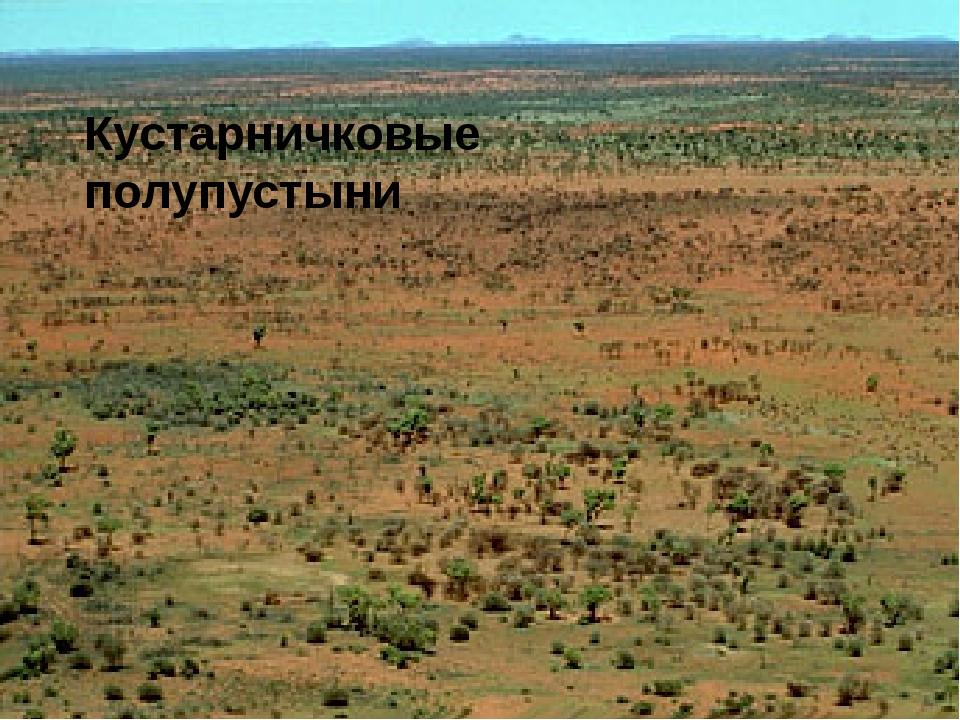 Кустарничковые полупустыни