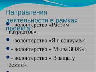 Направления деятельности в рамках проекта: - волонтерство «Растим патриотов»;