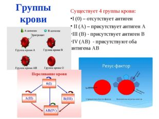 Группы крови Существует 4 группы крови: I (0) – отсутствует антиген II (А) –