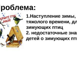 Проблема: 1.Наступление зимы, тяжолого времени, для зимующих птиц 2. недостат