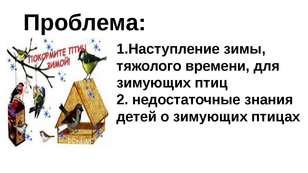 Проблема: 1.Наступление зимы, тяжолого времени, для зимующих птиц 2. недостат...