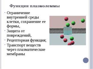 Функции плазмолеммы Ограничение внутренней среды клетки, сохранение ее формы,