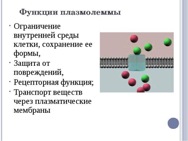 Функции плазмолеммы Ограничение внутренней среды клетки, сохранение ее формы,...