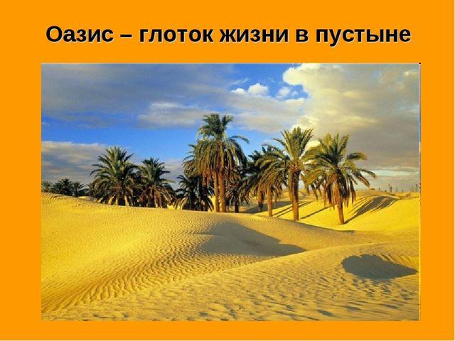 Оазис – глоток жизни в пустыне