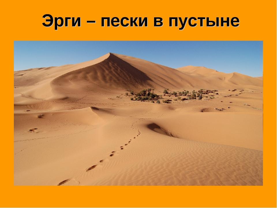 Эрги – пески в пустыне