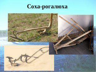Соха-рогалюха