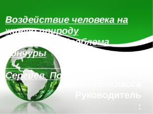 Воздействие человека на живую природу Проблема Кончуры Сергиев Посад Проект У