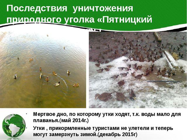 Мертвое дно, по которому утки ходят, т.к. воды мало для плаванья.(май 2014г.)...